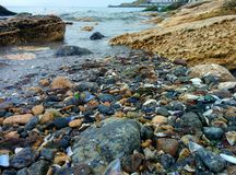 Seascape with shells and stones. Shells and stones on a sea shore Royalty Free Stock Photos