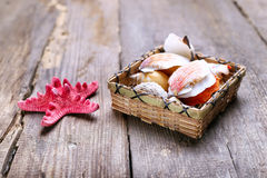 Shells on a table Royalty Free Stock Images