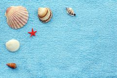 Shells on a towel. Various seashells and small starfish on blue towel Royalty Free Stock Photography