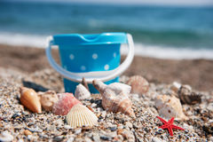 Shells and toys. Many shells and toys at the summer beach Royalty Free Stock Image