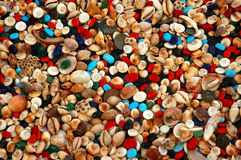 Shells u. Perlen stockfoto