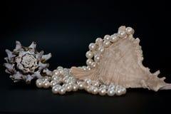 Shells und Perlen Stockfotografie