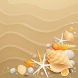 Shells und Starfishes auf Sandhintergrund Stockbild