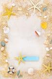 Shells und Starfishes auf Sandhintergrund Lizenzfreies Stockfoto