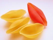 Shells van deegwaren royalty-vrije stock afbeeldingen