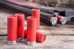 12 shells van het maatjachtgeweer Stock Fotografie