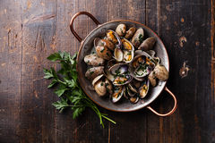 Shells vongole venus clams with parsley Stock Photography