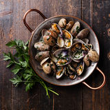 Shells vongole venus clams with parsley Stock Photo