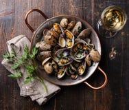 Shells vongole venus clams Stock Photo