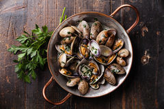 Shells vongole venus clams with parsley Royalty Free Stock Photo