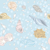Shelly Bay seamless vector pattern Royalty Free Stock Image