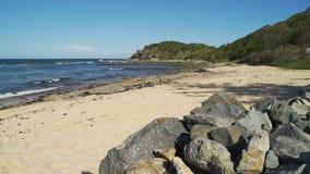 Shelly Beach im Hafen Macquarie in Australien stock video