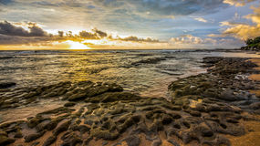 Shelly Beach Rocks Royalty Free Stock Images