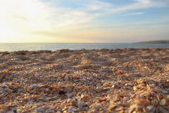 Shelly beach tourism background Stock Images