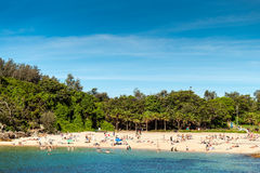 Shelly Beach view with people on a bright warm day, New South Wa Royalty Free Stock Photography