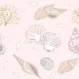 Shelly seamless pattern Royalty Free Stock Images