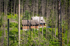 Shelter in the forest of Tatra mountains Royalty Free Stock Photos