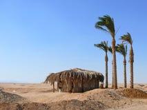 Shelter of palm leaves in the desert. Stock Image