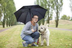 Shelter in the Rain Royalty Free Stock Image