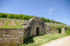 Shelter in the vineyards Stock Image