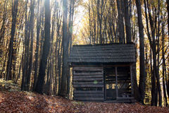 Shelter in woods. Lonely shelter in woods in autumn Stock Photography