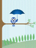 Sheltering from the rain Royalty Free Stock Photos