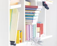 Shelves with books. Shelves with some colored books Royalty Free Stock Images