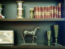 Shelves with books, statuettes and frame for photos Royalty Free Stock Image