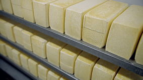 Shelves with cheese stock video footage