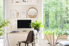 Shelves with illustrations above a wooden desk with computer by. A window in a natural, white home office interior for an artist stock photography