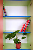 Shelves with a plant and books Stock Photo