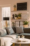 Shelves with plants and framed posters above a cozy, gray corner. Sofa with pillows in a scandi living room interior with white walls. Real photo stock images