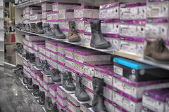 Shelves with shoes Stock Image