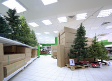 Shelves with variety of artificial Christmas tree Royalty Free Stock Images