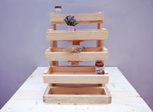 Shelves Wood of the steps Stock Image