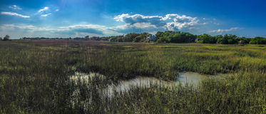 Shem Creek, Charleston, SC. Stock Images