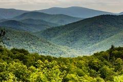 Shenandoah国家公园,弗吉尼亚美国 库存照片