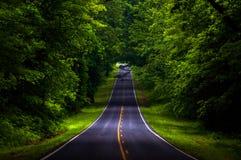 地平线驱动在Shenandoah国家公园一个沉重被遮蔽的森林区域  免版税库存照片