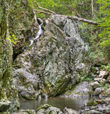Розовые падения реки, национальный парк Shenandoah Стоковые Изображения