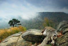 Shenandoah in de Herfst Stock Afbeeldingen
