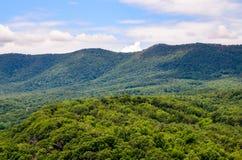 Shenandoah floddelstatspark Arkivbild