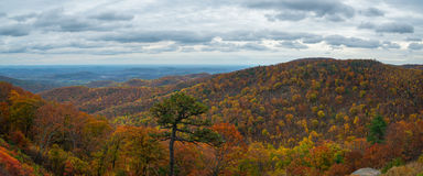 Shenandoah National Park Panorama. A view from skyline drive in Shenandoah during autumn Stock Photos