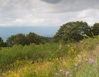Shenandoah National Park Scenic overlook Stock Image