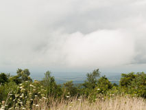 Shenandoah National Park Scenic overlook. Of rural valley and closer view of trees, natural flowers and grasses on a clouded summer day Royalty Free Stock Photos