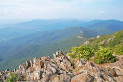 Shenandoah nationalpark Royaltyfria Bilder