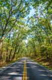 Shenandoah nationalpark Arkivfoton