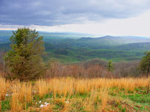 Shenandoah nationalpark Virginia Arkivfoto
