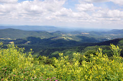 Shenandoah Valley. Scenic Shenandoah Valley from Skyline Drive in Virginia, USA Stock Images