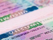 Shengen visa Stock Images