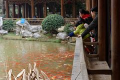 Tourist ornamental goldfish-A corner of the park. Shengjin tower brick Pavilion style tower Jiangnan typical, 50.86 meters high tower, the tower for the seven Stock Photo